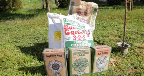 Fruit Tree Fertilizer Calculator Fruit Trees Organic Gardening Organic Nitrogen