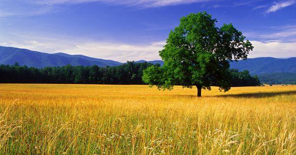 Beautiful Landscape Photography | nature-landscape-beautiful ...