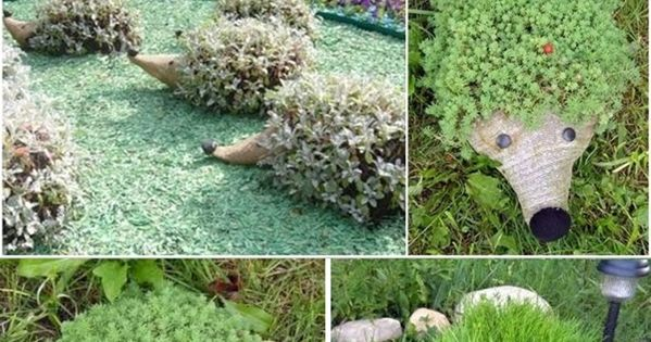 DIY Hedgehog PET bottle planters. Cat grass would be perfect to grow