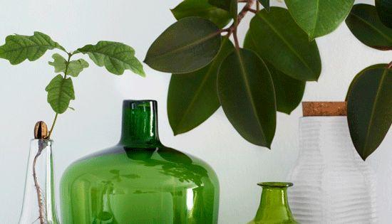 kivi leuchter von iittala gr n ist immer ein hingucker kombinieren sie verschiedene flaschen. Black Bedroom Furniture Sets. Home Design Ideas