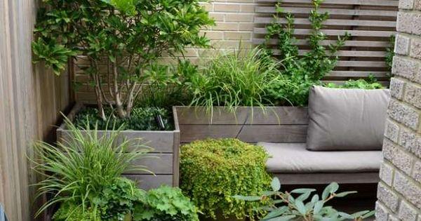 kleine terrassen garten stadt baum topf gestaltungstipps gestaltungstipps pinterest kleine. Black Bedroom Furniture Sets. Home Design Ideas