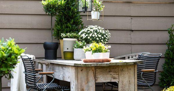 deko terrasse balkon lorbeer wei e blumen bildnachweis terrasse. Black Bedroom Furniture Sets. Home Design Ideas