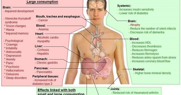 effects of alcohol on the body essay