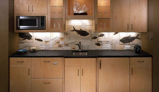 Look! Fossil Countertops and Backsplashes Fossils