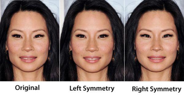 Face Symmetry Of Celebrities Face Symmetry Face Celebrities