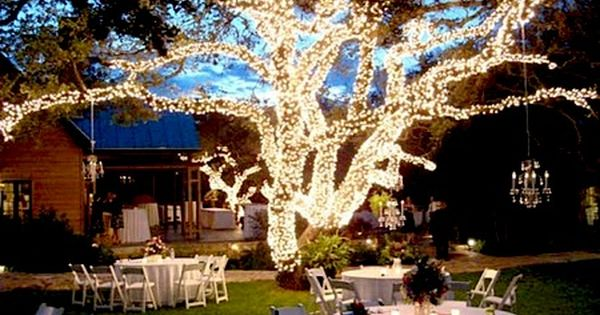 oooh, love the chandelier hanging off the tree! How pretty for a