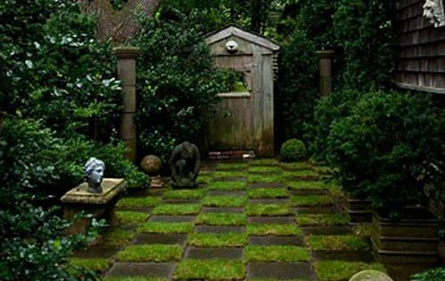 Possible side yard idea