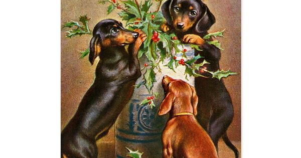 Vintage Christmas Dachshund Dogs Holiday Card Zazzle Com