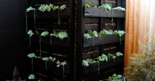 vertical garden, pallets...maybe housing the outdoor shower??