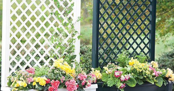 What could be better than a planter and trellis in one? Make