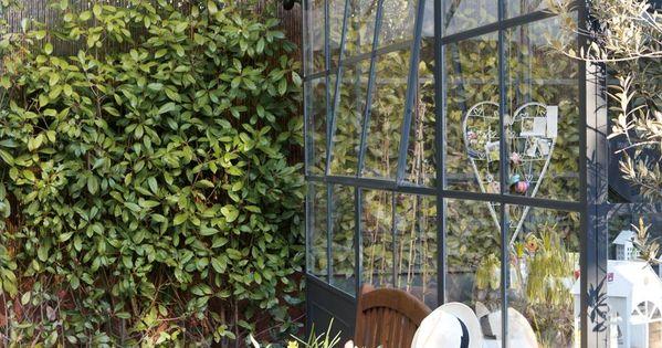 Primavera en el invernadero casa sana - Cortavientos de jardin ...