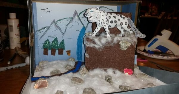 Snow Leopard Diorama | Kids stuff | Pinterest | Snow ...
