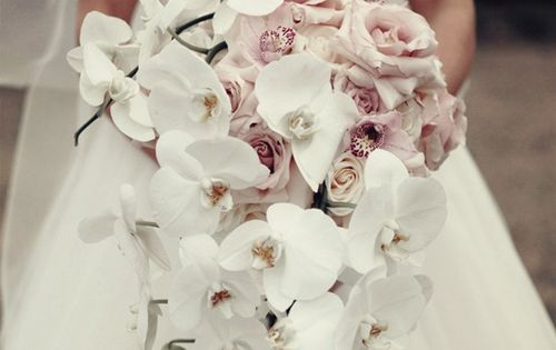 orchid wedding boquet | ... You Like for Wedding Bouquet | Bridal