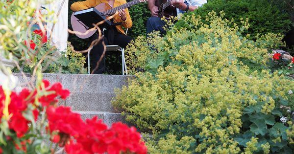 italienische nacht mit italienische melodien und picknick in den, Garten Ideen