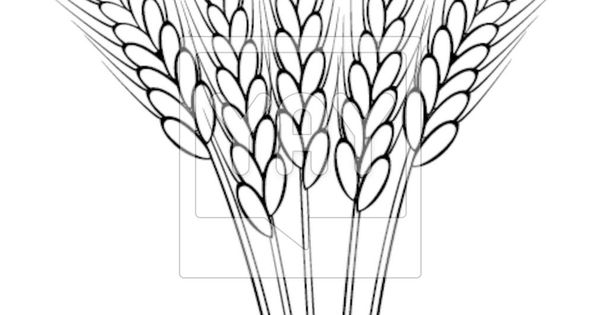 wheat stalk clip art black and white ideas for the house