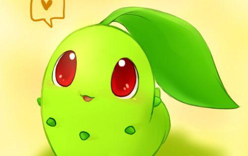 Chikorita Pokemon Pinterest Pok 233 Mon Pokemon Stuff And Anime