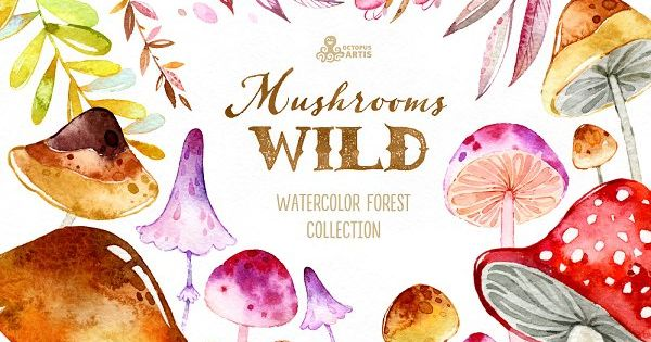 Wild Mushrooms. Forest Collection by OctopusArtis on @creativemarket