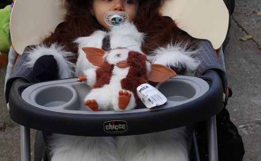 babies in costumes: gizmo costume