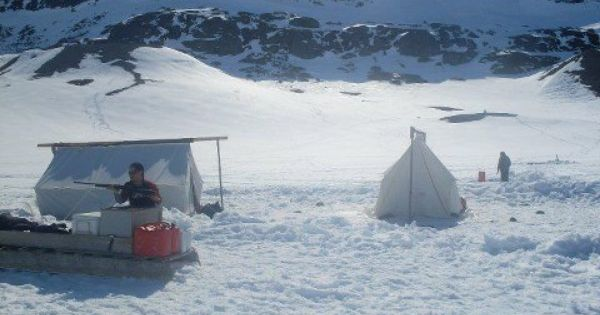 nunavut tunngavik inuit firm registry