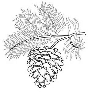 Pine Cone Coloring Pages Download Coloring Page Pyrography