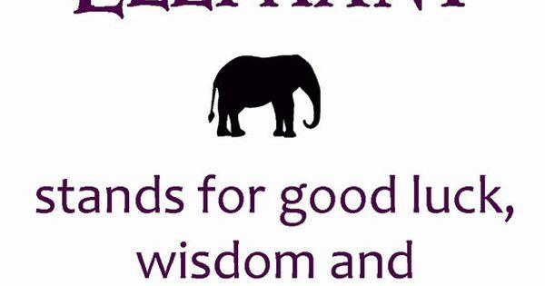 Elephant Good Luck Quote: Elephant Bracelet - Turquoise Stone - Beaded