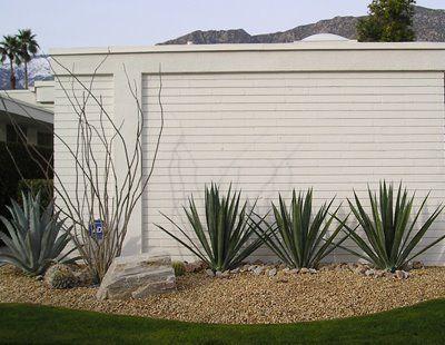 Desert Modern Landscaping Palm Springs Modern Homes Modern Landscaping Modern Landscape Design Front Yard Landscaping Simple