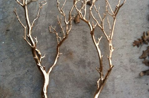 Spray paint tree branches gold. Would look amazing as home decor pieces!