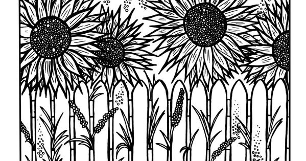 Sunflower Coloring Page Download Adult Coloring