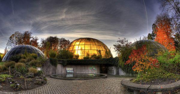 Greenhouse Domes Zurich Botanical Gardens Botanischer Garten Zurich Eco Friendly House Botanical Gardens Roof Garden