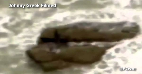 عاجل شاهد عروس البحر الحقيقية Youtube