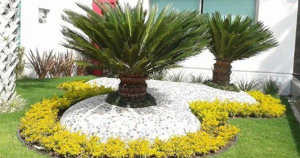 Decoraci n de palmas sica con piedras de rio y cemento for Decoracion con piedras