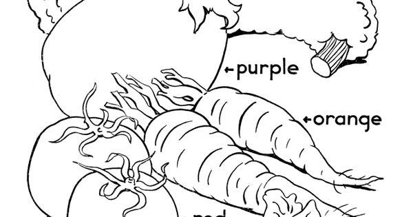 Thanksgiving Dinner Coloring Page Shows Garden Vegetables