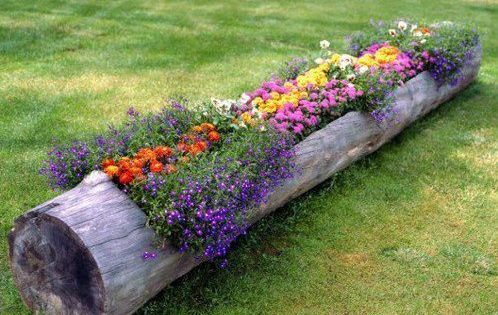 parterre de fleurs dans un rondin de bois jardin pinterest parterres de fleurs rondin de. Black Bedroom Furniture Sets. Home Design Ideas