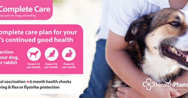 Vets4pets Will Be On Hand At Some Of Our Shows Giving You Expert Advise About Your Pets Your Pet Health Check Your Dog