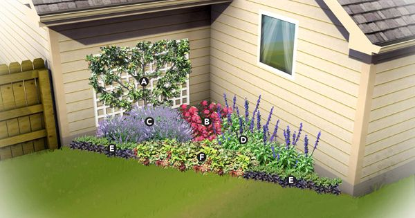 flower bed plans full sun 1