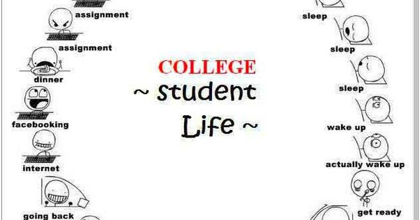 Student Life Cycle, so true.