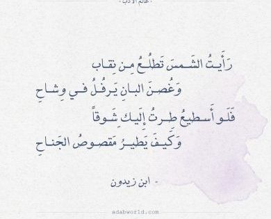 Pin By Noureddineezzahir On حلاوة اللسان شعر Love Words Words Quotes Arabic Tattoo Quotes
