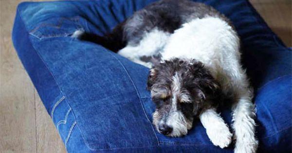 selbst gen htes hundebett geschenke f r hundefreunde selber machen stitch and sew. Black Bedroom Furniture Sets. Home Design Ideas