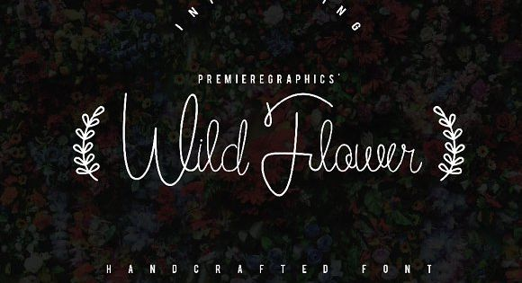 Wild Flower is a new script that is beautifully handwritten