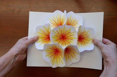 Comment faire une carte pop up fleur bricolage en papier facile a faire id e bricolage - Bricolage en papier facile a faire ...