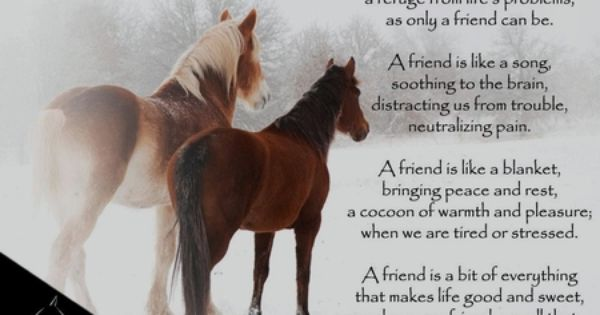 AWESOME POEM | poems & quotes | Pinterest | Poem, Horse ...