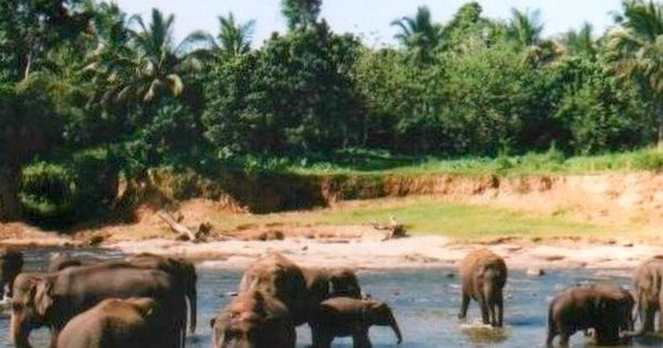 Top Places To Visit in Sri Lanka. Recommendations on Sri Lankas best
