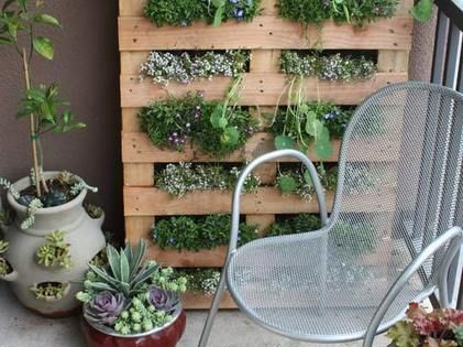 balcony garden (ideas for small spaces)