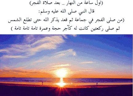 تحميل كتاب كلمة للداعية الإسلامي مصطفى حسني Pdf وقفة دعوية Islam Facts Beautiful Islamic Quotes Book Qoutes