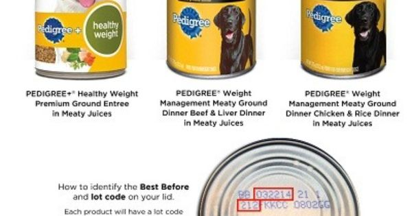 Pedigree Dog Food Recall Make Sure U Are Not Giving Your Dogs This