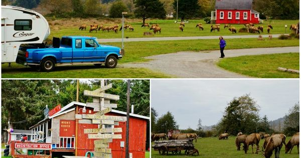 10 Coolest Rv Campsites Visited In 2015 Rv Campsite Campsite Pack Up And Go