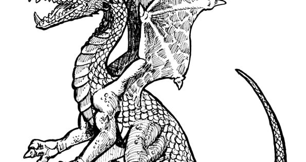Dessin tr s r aliste d un dragon colorier dessin pour - Dessin d un dragon ...
