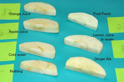 6 Ways To Stop Fruit From Browning Food Science Third Grade