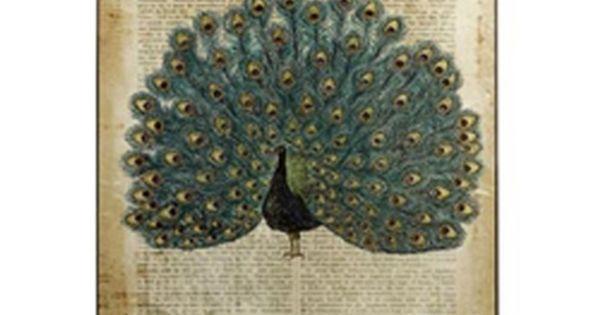 Antiquarian Peacock Wall Art - Peacock Art - Bird Wall Art -