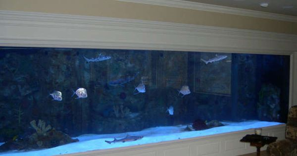 Fish tank wall to theme or not to theme that is the for Fish tank riddle